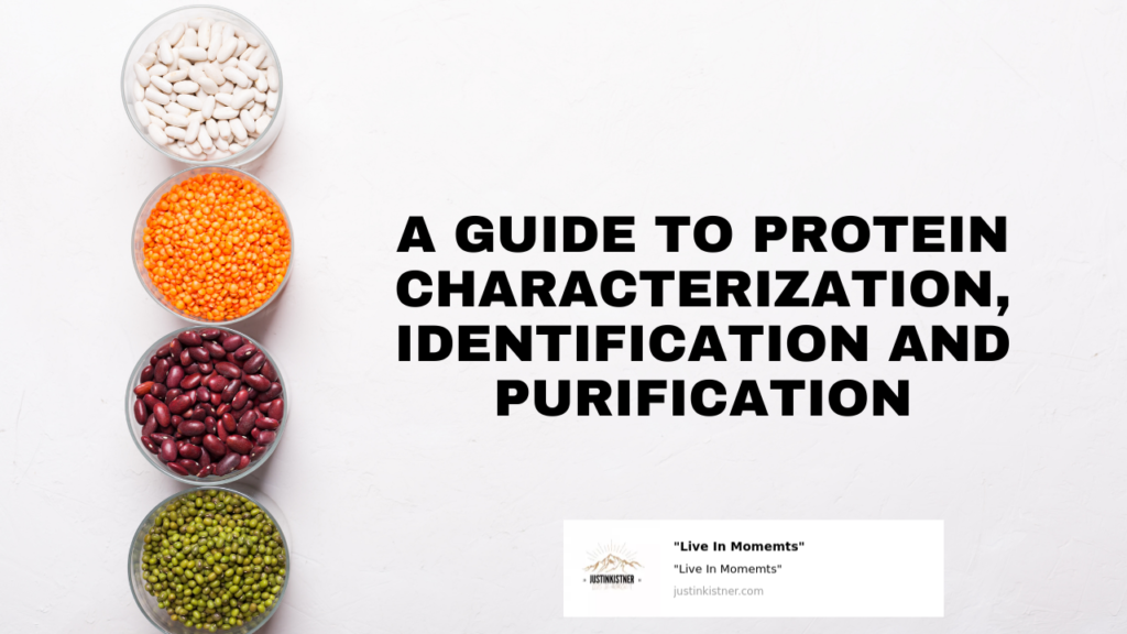 A Guide to Protein Characterization, Identification and Purification